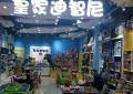 皇家迪智尼儿童玩具加盟店市场分析以及计划