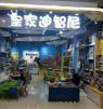 皇家迪智尼兒童玩具加盟店市場分析以及計劃