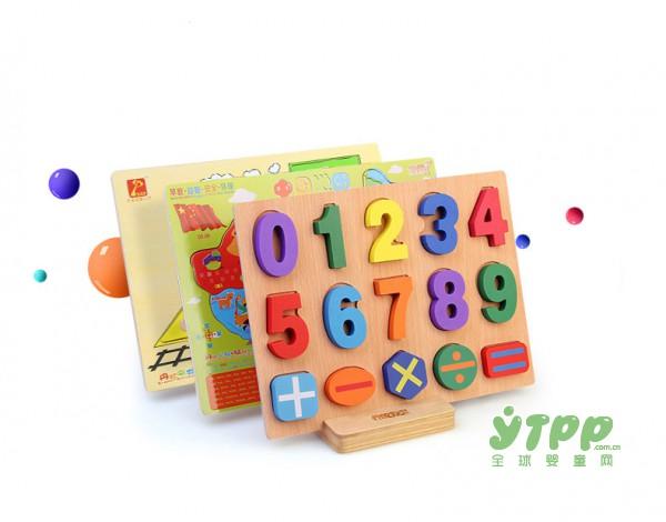 丹妮奇特益智积木拼板玩具  学前启蒙认知板  宝宝越玩越聪明