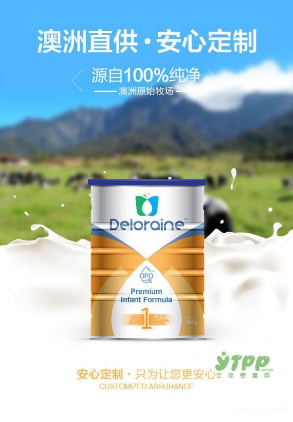 德洛兰OPO婴儿配方奶粉  OPO结构脂优化宝宝的营养吸收