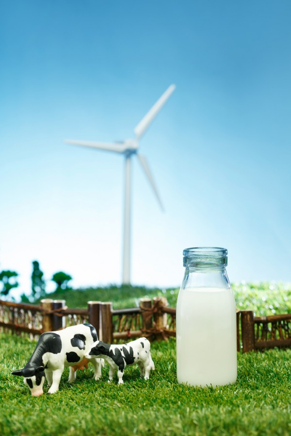 國產奶粉三、四線渠道布局見成效,市場份額顯著提升