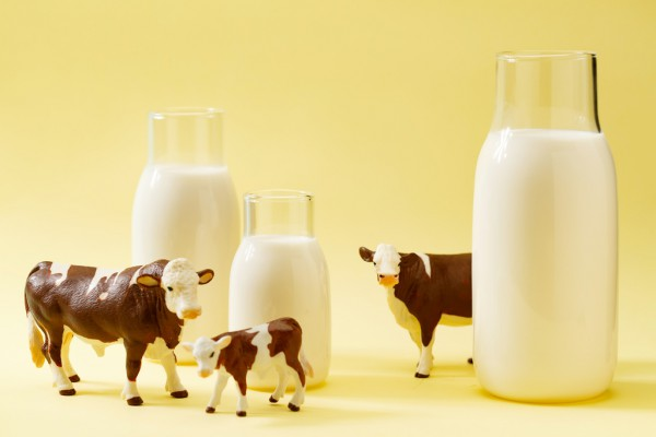 國際合作助力我國奶業持續發展