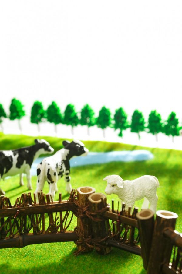 武漢綠麥食品抽檢不合格,保持食品安全才是競爭上策
