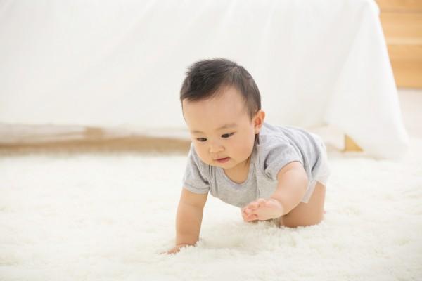 好物推荐:婴养专家乳铁蛋白调制乳粉 宝宝的健康营养好搭档