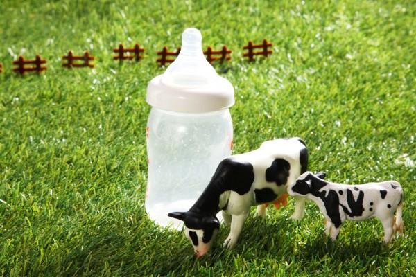 """一段奶粉降价销售的背后隐患  未来奶粉市场发展前景真的会""""一团糟""""吗"""