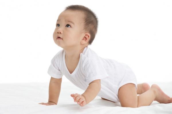 2020年国内纸尿裤市场洗牌在即    专家表示:要从年轻父母中挖掘增长点