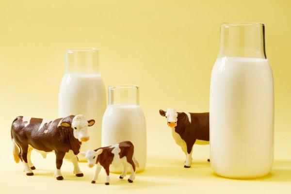 """疫情下的奶业:上游奶农大量倒奶;下游消费者奶粉""""断粮"""""""