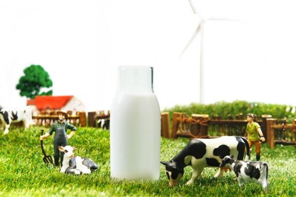 欧洲疫情蔓延:个人代购业务受阻,未来婴配粉原料供应面临挑战