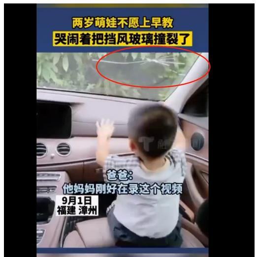 2岁宝宝因不愿上早教车上撞裂挡风玻璃,所幸并无大碍