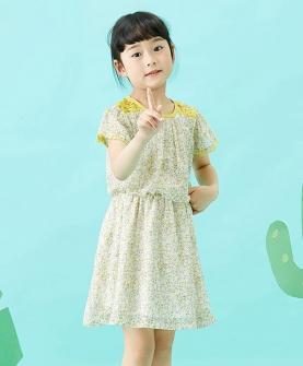 新款雪纺裙(夏)