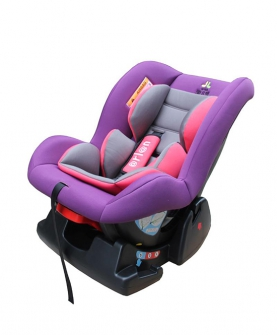 吉祥草RZ紫粉灰