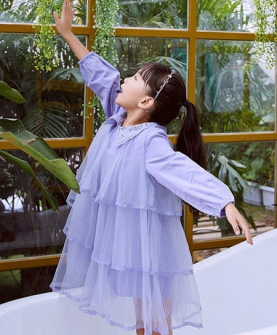 纯色长袖透纱公主裙