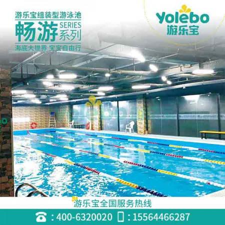 吉林家庭组装式游泳池设备大型拆装式钢结构游泳池无边际泳池