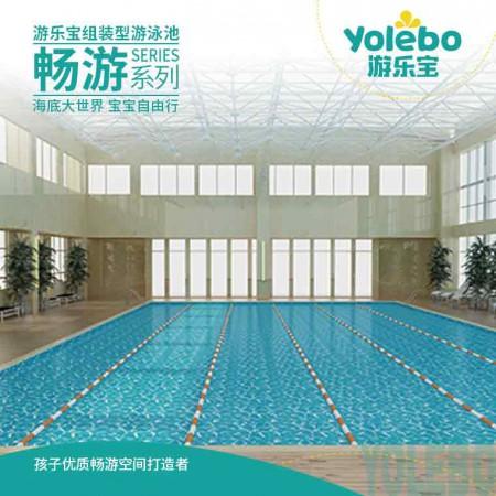 广西成人游泳戏水池钢板池组装式家用无边际泳池逆流池